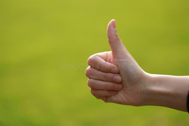A boa mão na grama, por uma mão da mulher, bom dia, bom trabalho, mostra bate acima imagens de stock royalty free