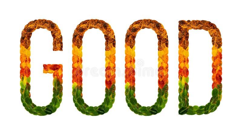 A boa palavra é escrita com fundo isolado branco das folhas, bandeira para imprimir, ilustração criativa das folhas coloridas ilustração do vetor