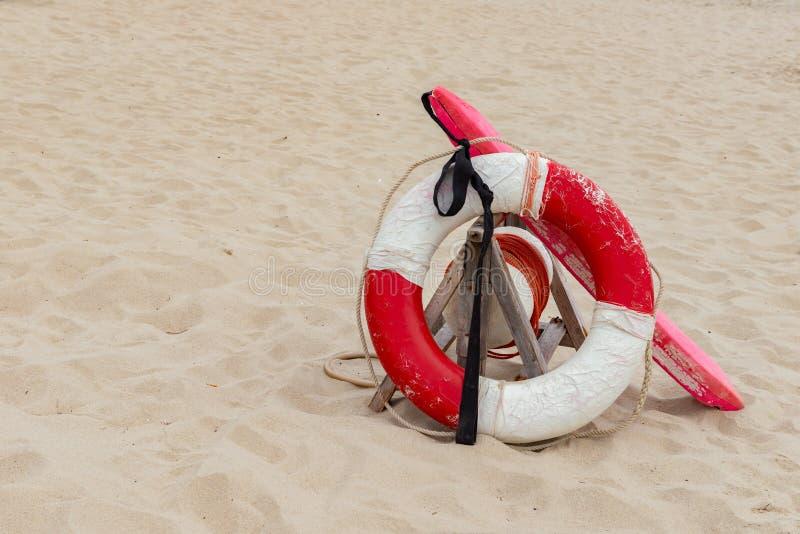 Boa sulla spiaggia sabbiosa fotografia stock