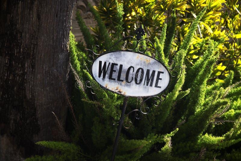 A boa vinda verde do jardim assina em Brownsville, Texas fotos de stock