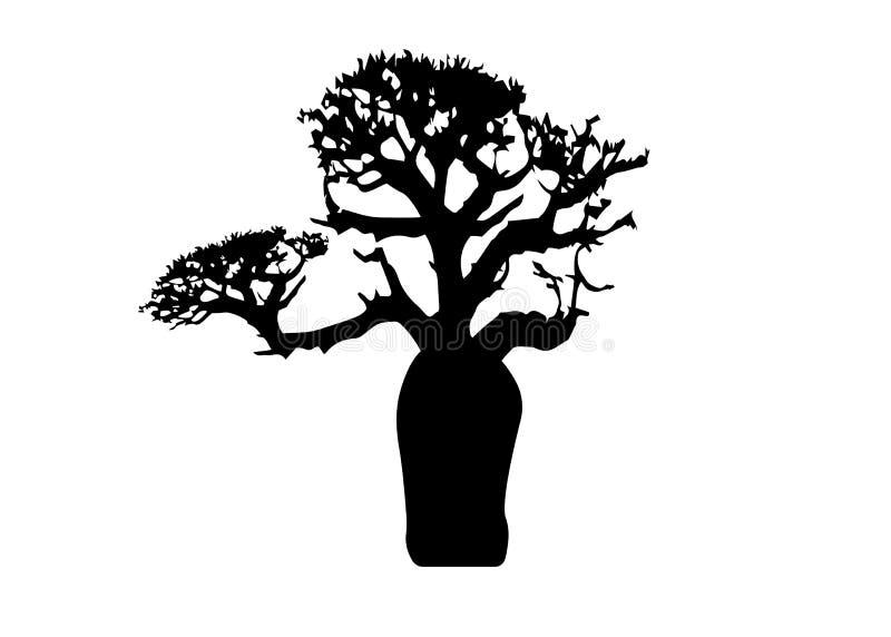 Boab lub baobabu Drzewny wektor odizolowywający, drzewna sylwetki ikona royalty ilustracja