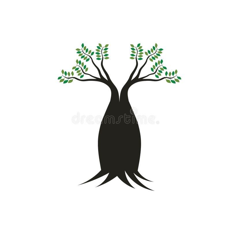 Boab tree stock illustrationer
