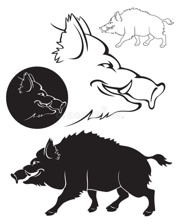 Boar. The figure shows a wild boar royalty free illustration