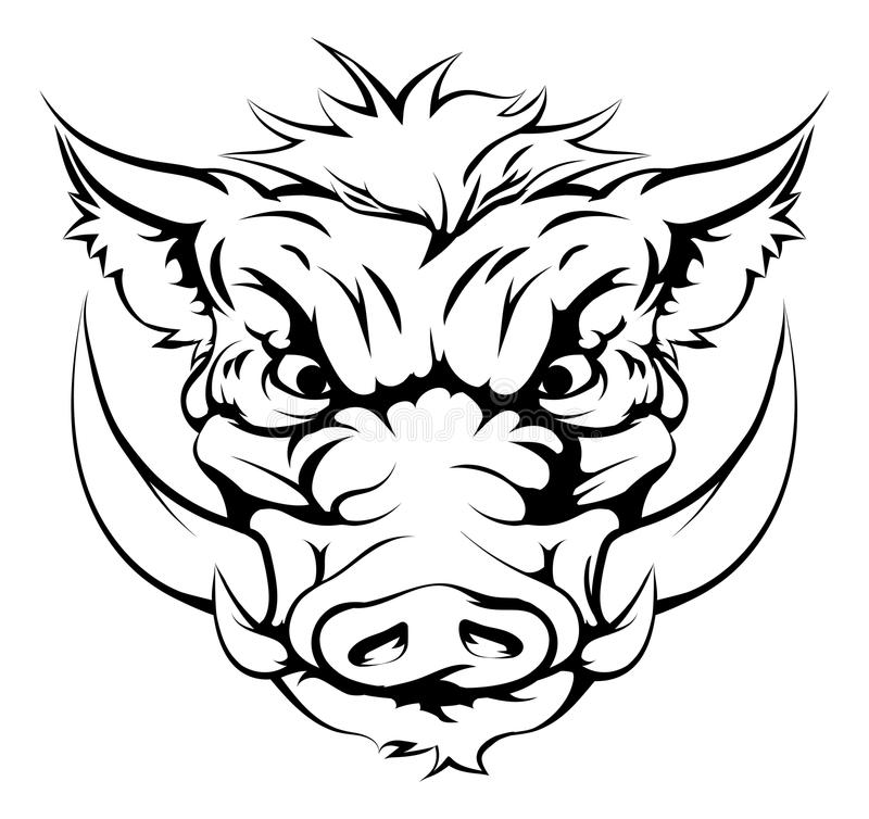 Boar mascot face. Drawing of a boar animal character or sports mascot vector illustration