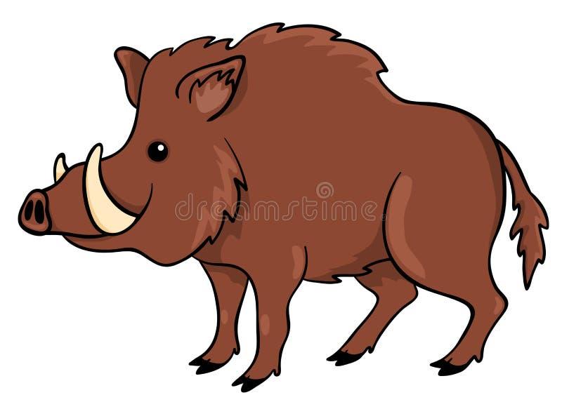 Boar on white. Vector cartoon illustration royalty free illustration