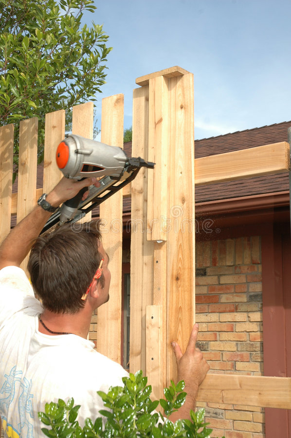Board on Board. Man builds a board on board wood fence for his backyard royalty free stock image