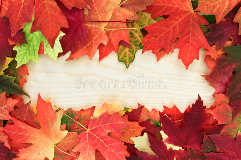 Download Board With Leafs Stock Images - Image: 21662544