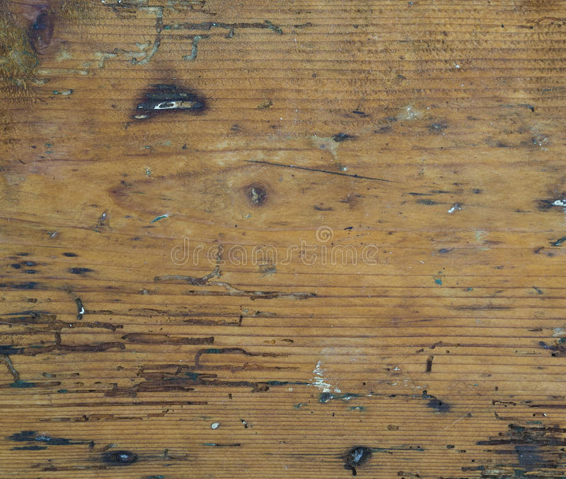 Board orange hardwood with woodworm path paint steines royalty free stock photography