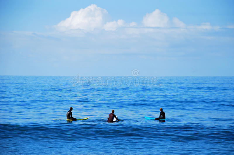 Board surfers waiting for a wave in Laguna Beach, California. royalty free stock photos