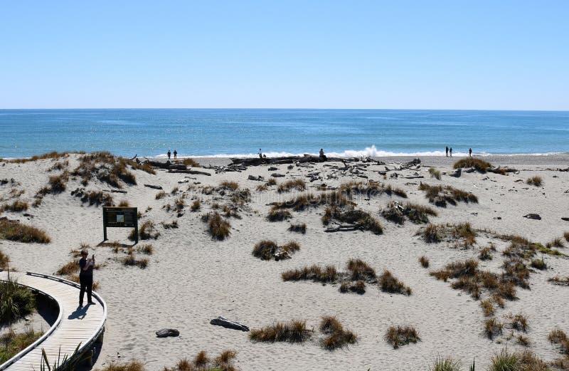 Board walk to beach, Ship Creek, South Island, NZ royalty free stock photos