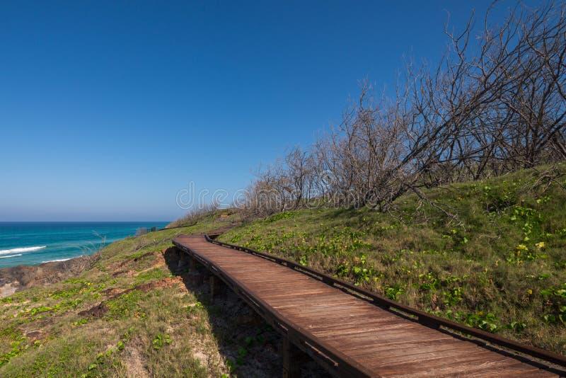 Boardpromenad vid kusten Boardpromenad vid kusten, Fraser Island royaltyfria foton