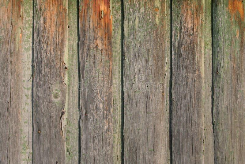 boards texureträ arkivbilder