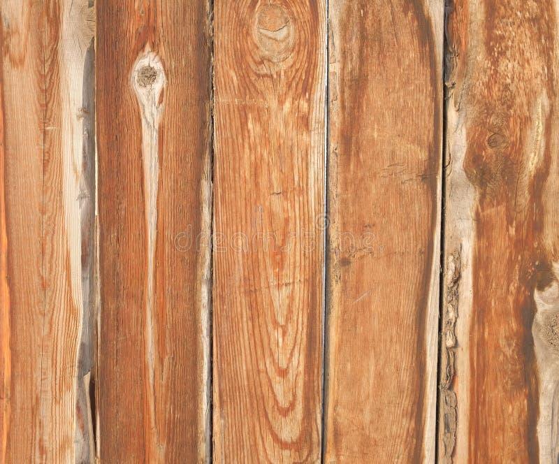 boards trä royaltyfria bilder