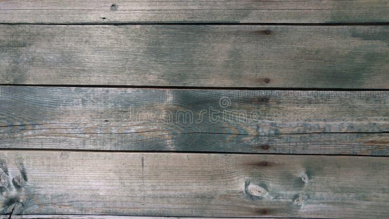 boards trä arkivfoton