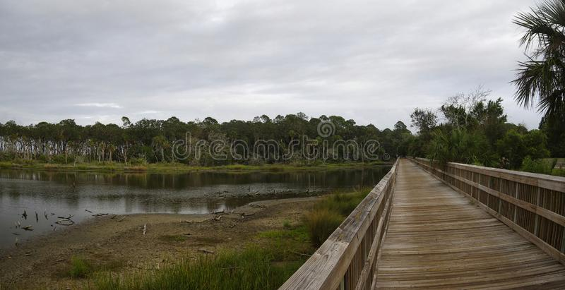 A boardwalk across marshland and lush tropical woods, Big Talbot Island State Park, Florida, USA royalty free stock images