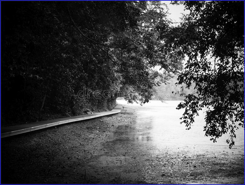 Boardwalk Around The Perimeter Of The Reservoir Free Public Domain Cc0 Image
