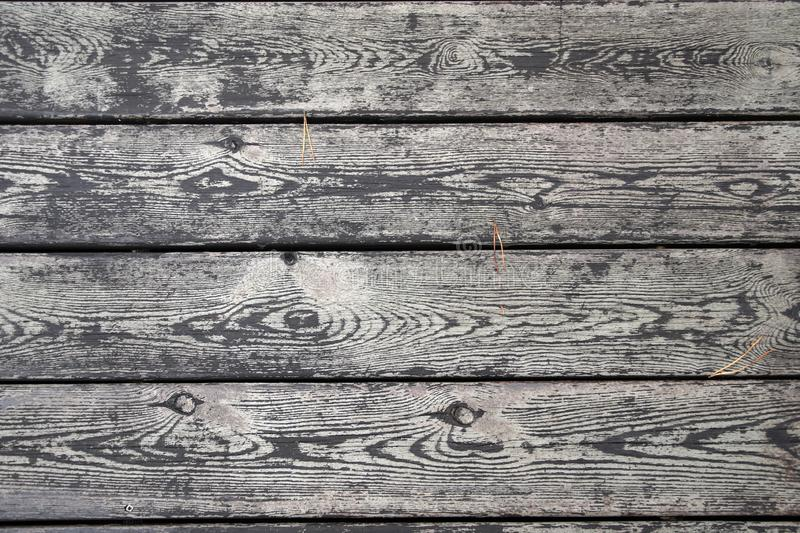 Boardwalk flooring on the promenade. Pronounced wood texture after rain. Dangling pine needles royalty free stock images