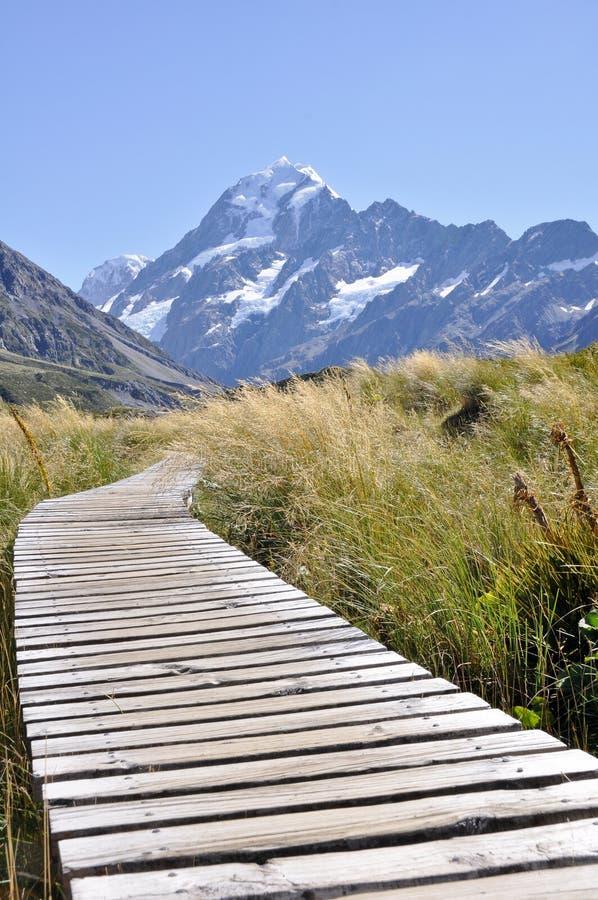 boardwalk kucharza góra nowa w kierunku Zealand zdjęcie royalty free