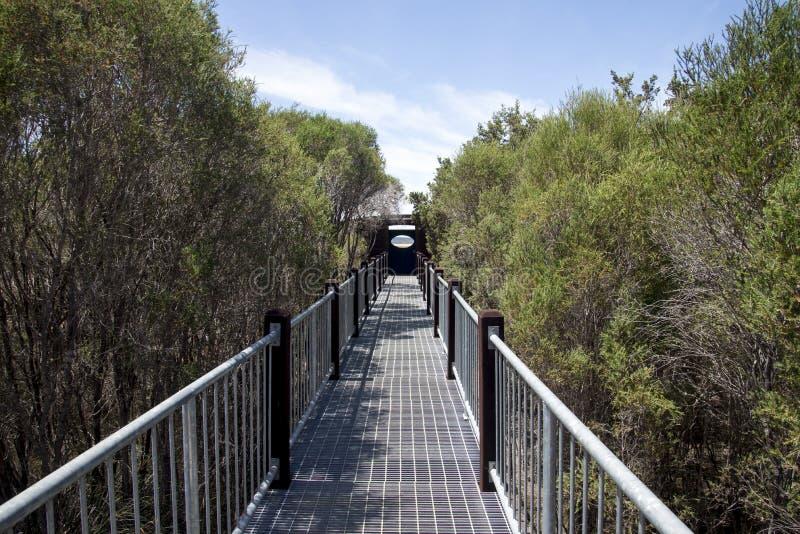 Boardwalk most Jeziorny Muir punkt obserwacyjny w zachodniej australii fotografia stock