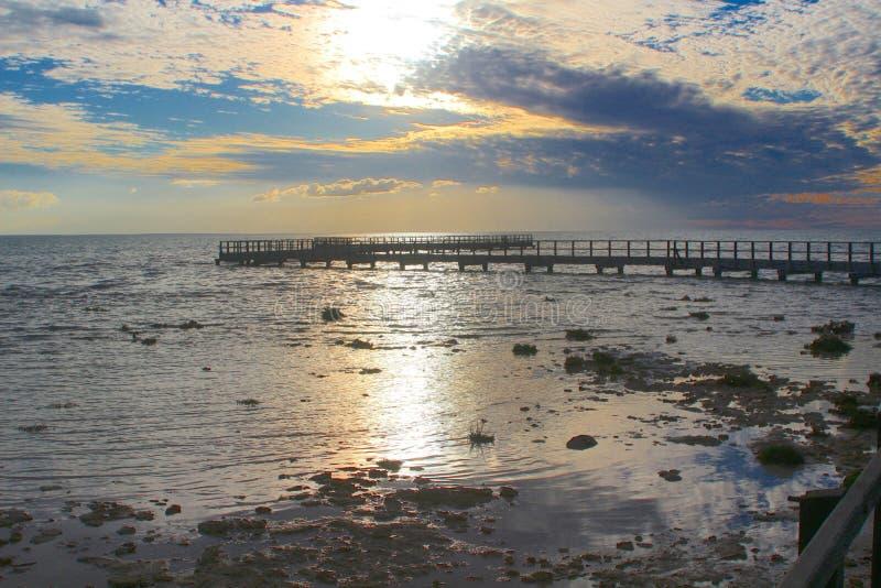 Boardwalk nad stromatolites przy Hamelin basenem, zachodnia australia obraz stock