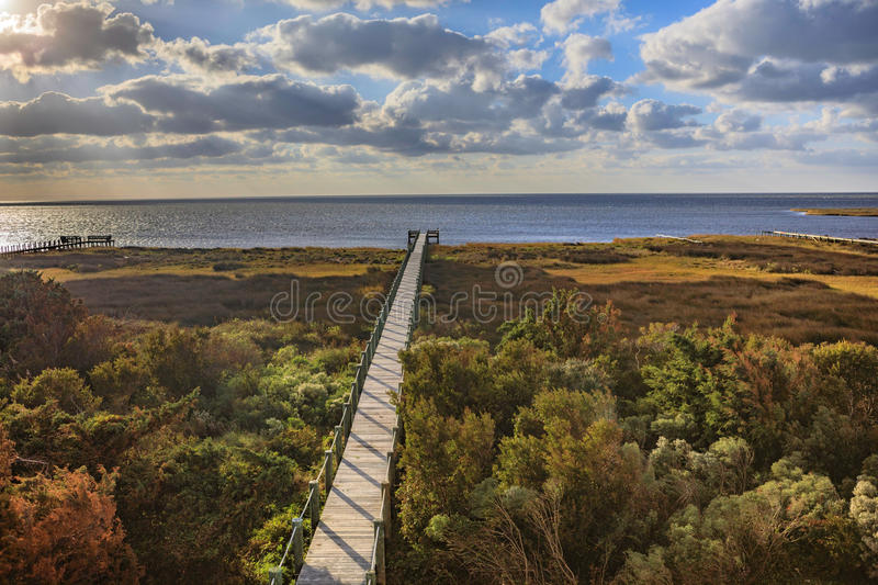 Boardwalk Pamlico Sound Autumn Salvo North Carolina Outer Banks stock photography