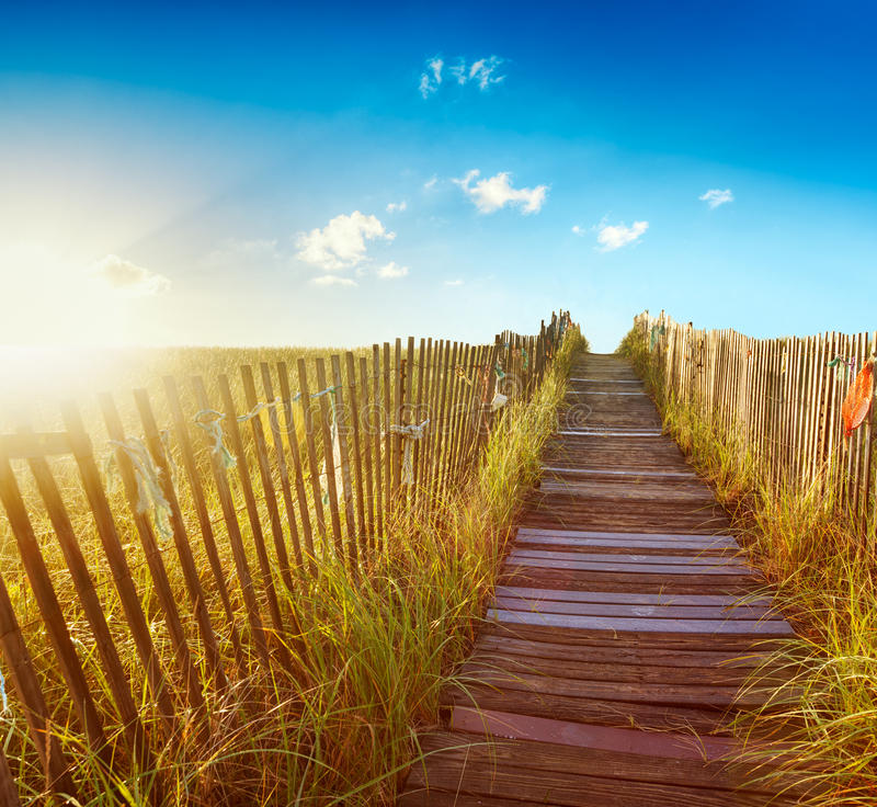 Download Boardwalk to the beach stock image. Image of rope, dune - 23019919