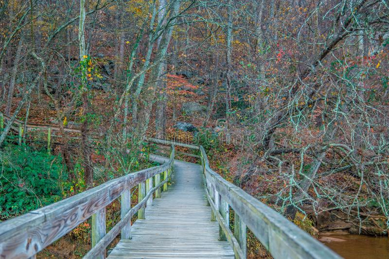 Boardwalk trail at the river royalty free stock photos