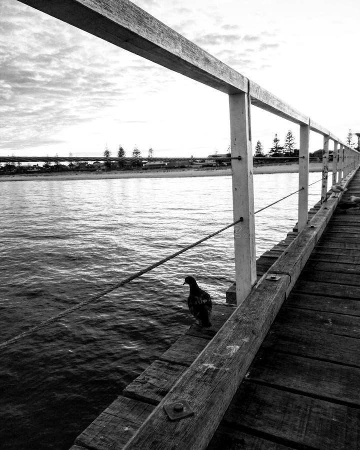 Boardwalk widok zdjęcie royalty free