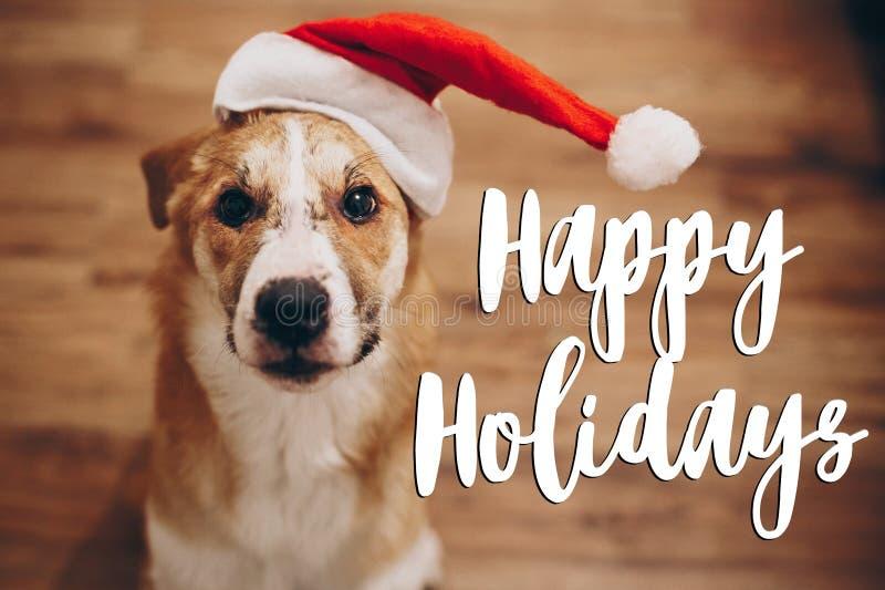 Boas festas texto, sinal sazonal do cartão de cumprimentos cão em Santa fotos de stock