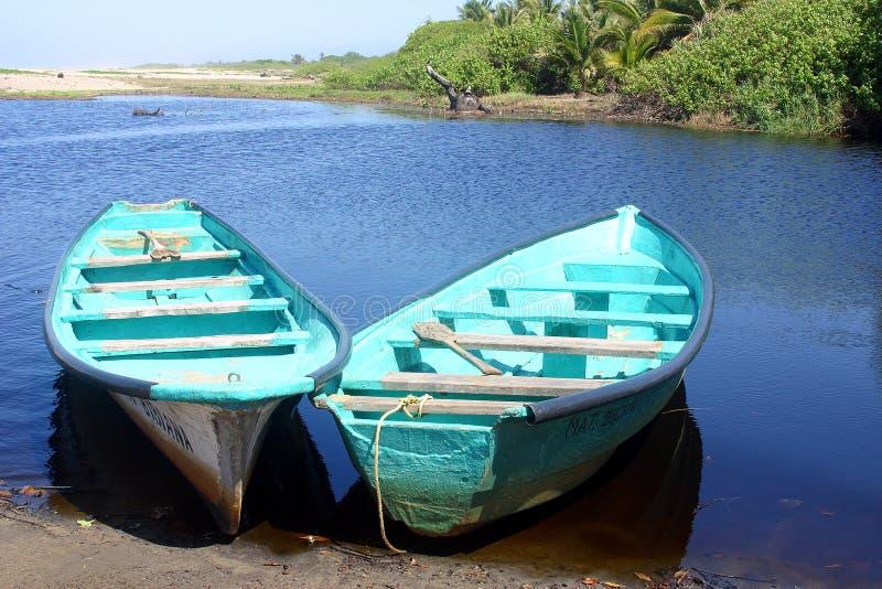Download Boat stock image. Image of nature, crocodile, vegetation - 1723725
