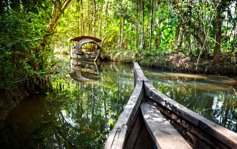 Boat in backwaters jungle stock photography