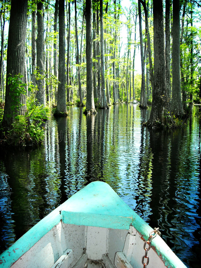 Boat on cypress swamp gardens North Carolina stock images