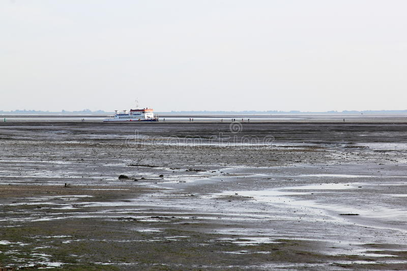 Boat excursion over Waddensea, Holland royalty free stock photos