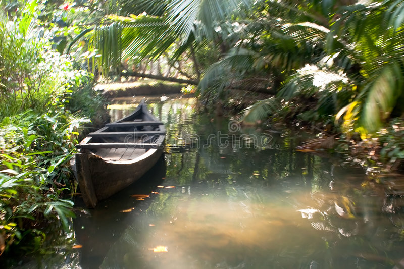 Boat floating on the canal in tropical forest. Isolate boat floating on the small canalr in tropical forest, southern Kerala's backwaters, India royalty free stock image