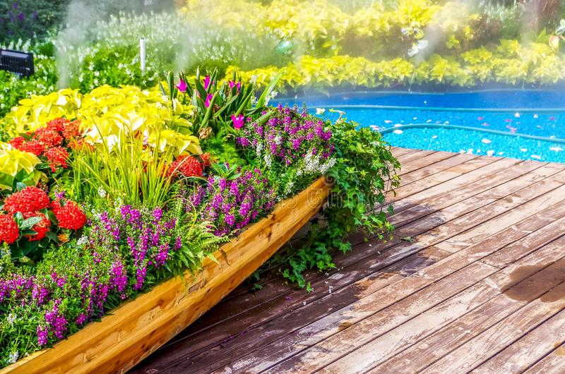 A boat full of flowers royalty free stock images