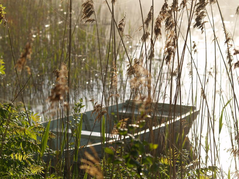 Boat on the lake in a misty morning royalty free stock photography
