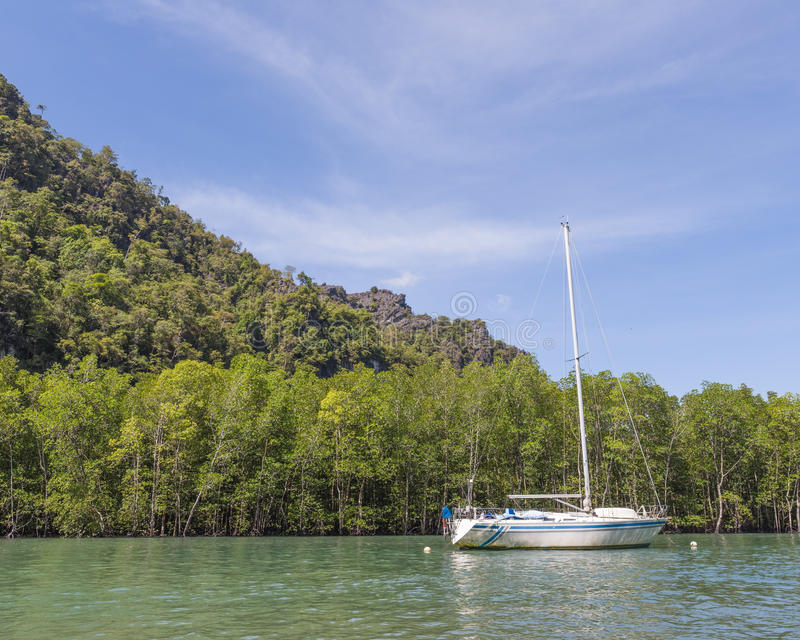 Boat on mangrove tour royalty free stock images