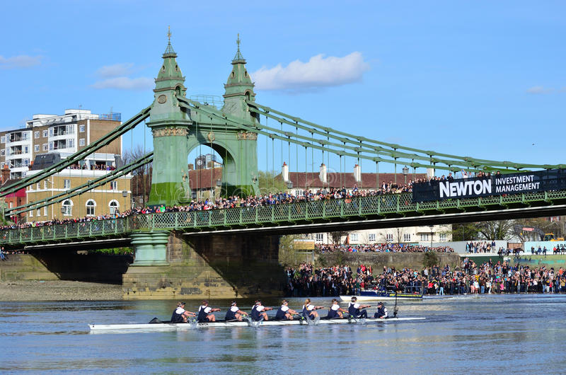 The Boat Race 2015 royalty free stock image
