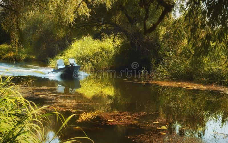 The boat is racing at speed among thickets along the river. Active rest on the water.n stock photography