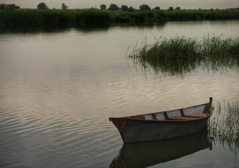 Boat on the river. royalty free stock photo