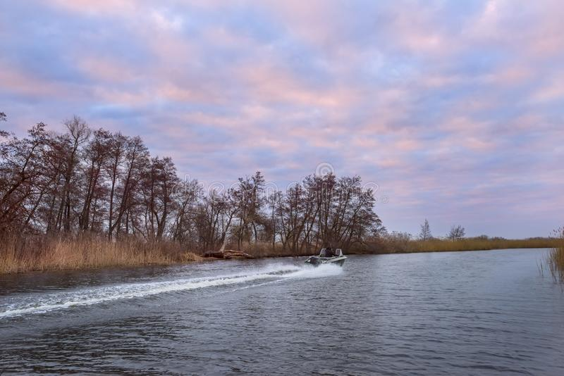 Boat rushing on a wild river in the early morning. stock photos