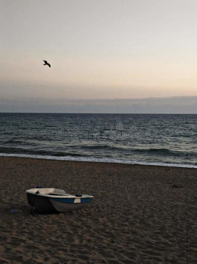 Boat with seagull. Asceamarina, beach stock image