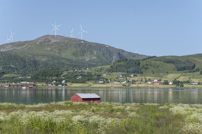 Boat shelter on blossoming shore of fjord, near Strand, Norway royalty free stock images