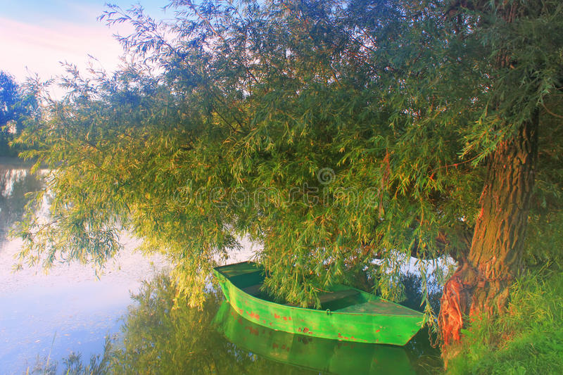 A boat on a tree on the shore of a misty lake stock photo