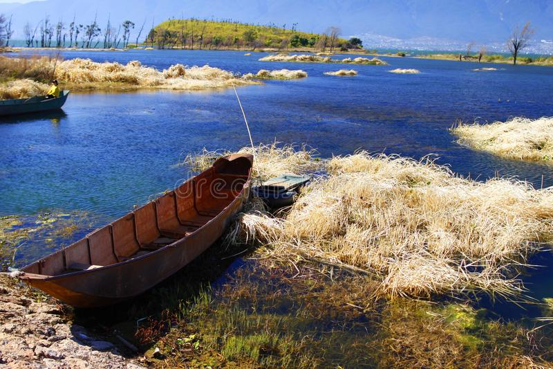 Brown wood boat on the wetland park of lake stock photo