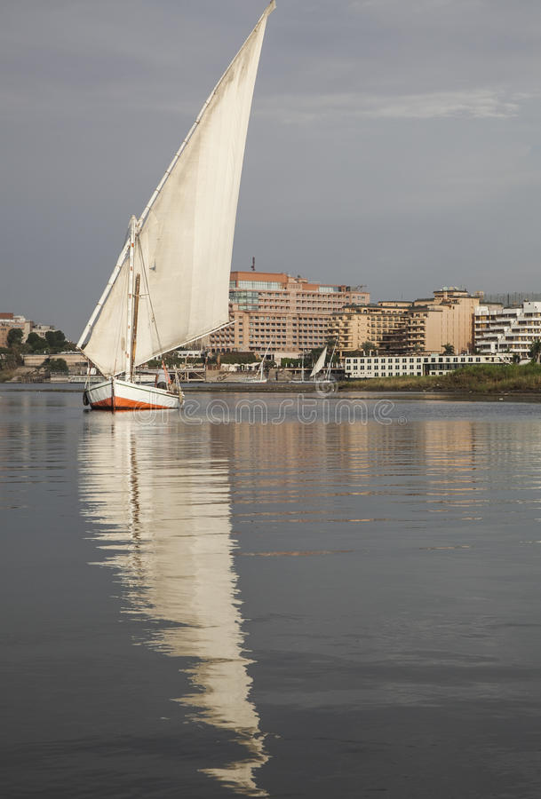A boat with a white sail. This picture shows a small boat with a big white sail which is reflected by the water. The picture was taken in Egypt, on the river stock photo