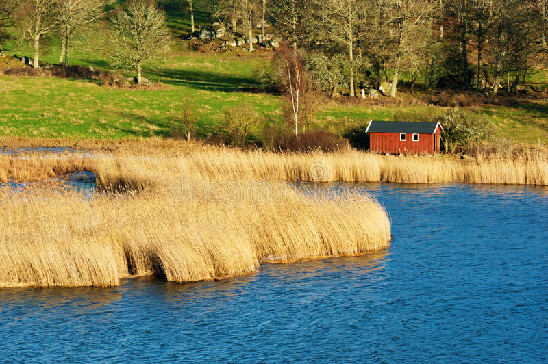 Boathouse and reed royalty free stock photo