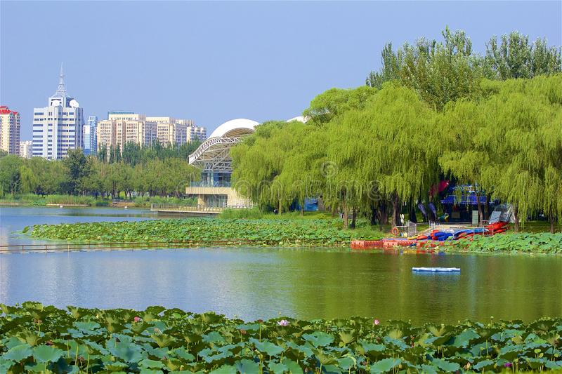 Chaoyang park, Beijing. Boating and views in Chaoyang park, Beijing, China royalty free stock image
