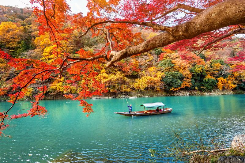 Boatman punting the boat at river. Arashiyama in autumn season along the river in Kyoto, Japan.  royalty free stock photos