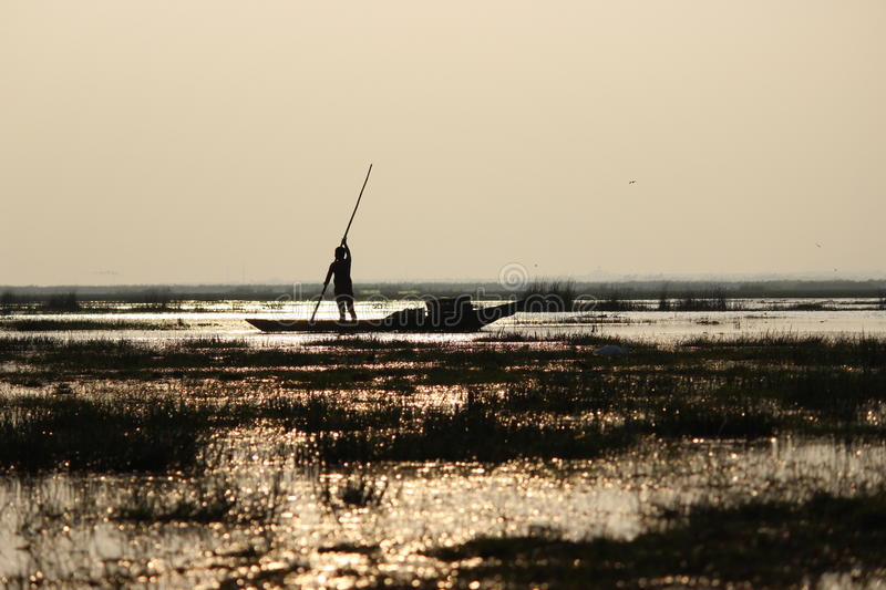 A boatman. Of state Orissa , in India stock photography